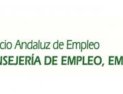 JUNTA-ANDALUCIA-empleo-empresa-comercio