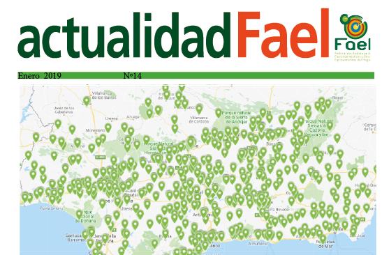 Revista ActualidadFAEL nº14