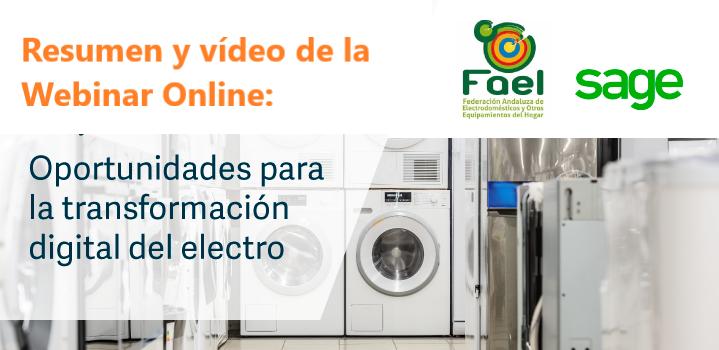 """Resumen y vídeo de la Webinar Online """"Transformación Digital de la Tienda Electro"""""""